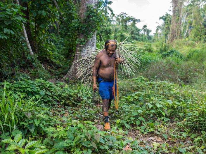 Ethnie Xikrin, tobotokukrae, Amazonie, açai, forêt, Brésil